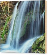 Price Falls 4 Of 5 Wood Print