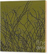 Prickly Branches Wood Print