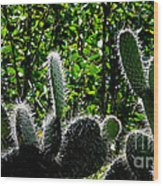 Prickly Juans Wood Print