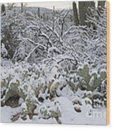 Prickly Pear And Saguaro Cacti Wood Print