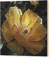 Prickly Pear Blooms Wood Print