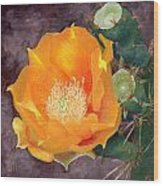 Prickly Pear Blossom Wood Print