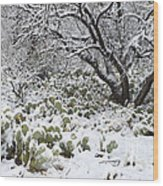 Prickly Pear Cactus And Mesquite Tree Wood Print