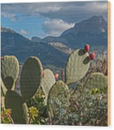 Prickly Pear Cactus And Mountains Wood Print