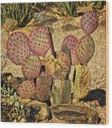 Prickly Pear Cactus Dsc08545 Wood Print