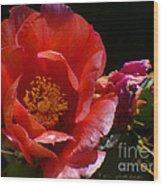 Prickly Pear Flower Wood Print