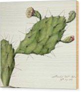 Prickly Pear (opunita Fiscus-indica) Wood Print
