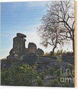Pride Rock Wood Print