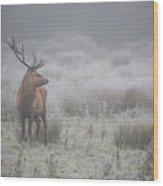 Prideful. Deer . Wood Print