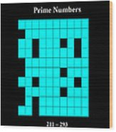 Prime Numbers As Invisible 211  293 Wood Print