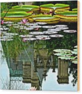 Prince Charmings Lily Pond Wood Print