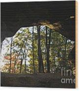 Princess Arch Starburst - D003133 Wood Print