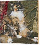 Princess Miss Gizzie By Diana Sainz Wood Print