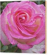 Princess Of Monaco Rose 1 Wood Print
