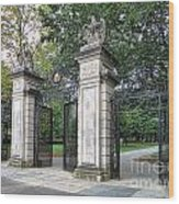 Princeton University Main Gate Wood Print