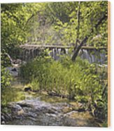 Pristine Forest Stream Wood Print