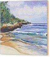 Pristine Mahaulepu Beach Wood Print