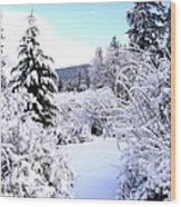 Pristine Winter Trail Wood Print