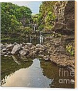 Private Pool Paradise - The Beautiful Scene Of The Seven Sacred Pools Of Maui. Wood Print