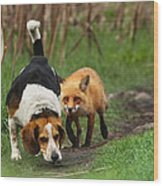 Probably The World's Worst Hunting Dog Wood Print