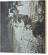 Probatic Pool, Jerusalem, 1844 Wood Print