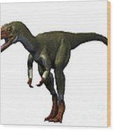 Proceratosaurus Dinosaur Wood Print