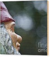 Profile Of A Garden Gnome Wood Print