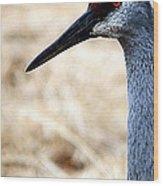 Profile Of A Sand Hill Crane Wood Print