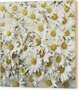 Profusion White Wood Print