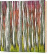 Progression Of Autumn Wood Print