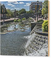 Promenade And Waterfall In Carroll Creek Park In Frederick Mary Wood Print