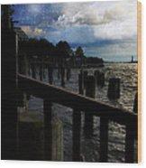 Promenade At The Hudson River New York City Wood Print
