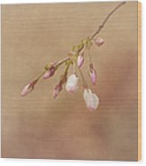 Promise Of Spring Wood Print