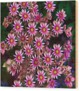 Promising Pink Petals Abstract Garden Art By Omaste Witkowski Wood Print