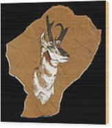 Pronghorn  Pictograph Wood Print