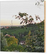 Prosecco Vineyards Wood Print by Sarah Christian