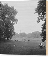 Prospect Park Brooklyn 1900 Wood Print by Steve K