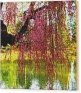 Prospect Park In Brooklyn Wood Print