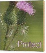 Protect Nature Wood Print