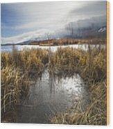 Protected Wetlands Wood Print