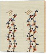 Protein Beta Sheets Wood Print