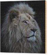 Proud Lion Wood Print