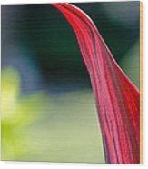 Proud Petal Wood Print