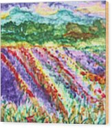 Provence France Field Of Flowers Wood Print