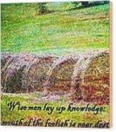 Proverbs 10 14 Wood Print