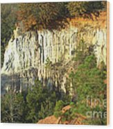 Providence Canyon State Park Wood Print