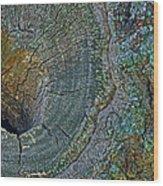 Pruned Limb On Live Oak Tree Wood Print