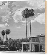 Ps City Hall Front Bw Palm Springs Wood Print