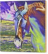 Psychedelic Horse Wood Print