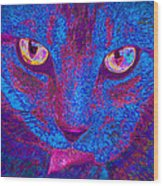 Psychedelic Kitty Wood Print